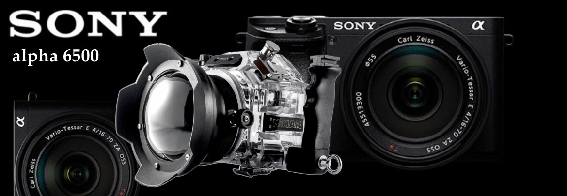 Underwater housing for Sony Alpha α6300 - α6500