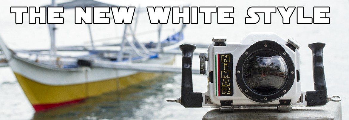 The New White Style